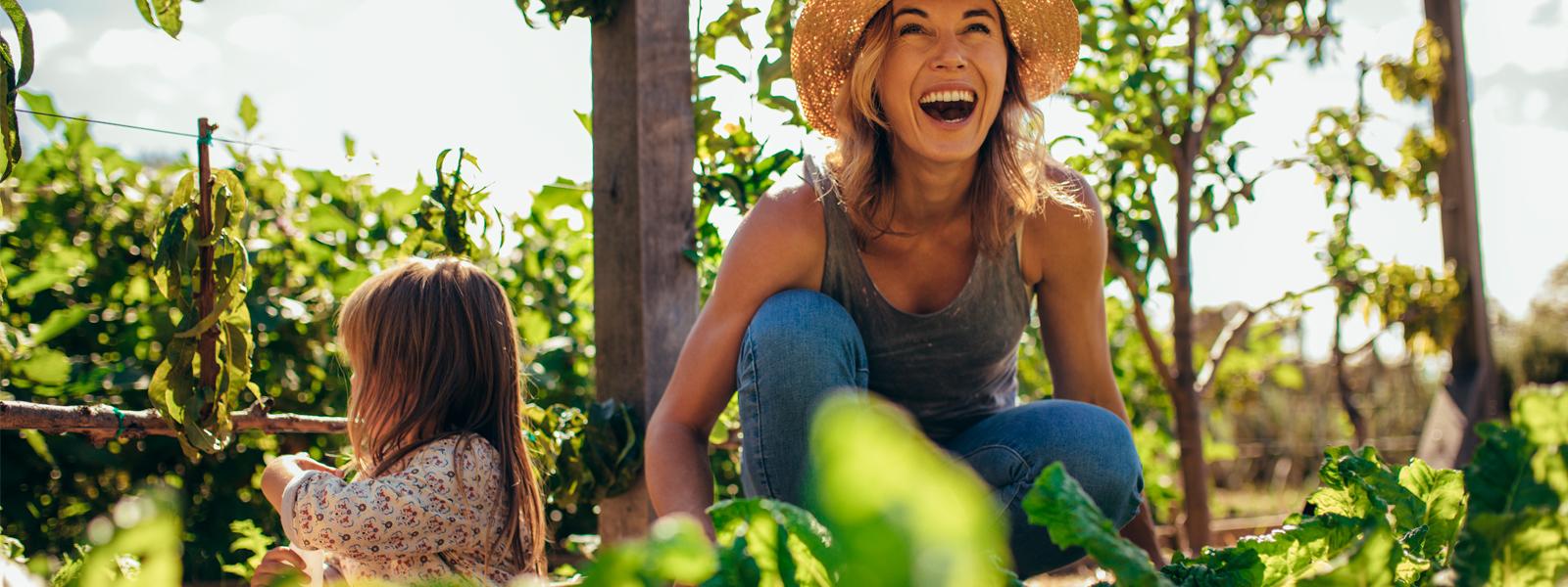ingredientes-carino-sustentabilidad-cuidado-naturaleza