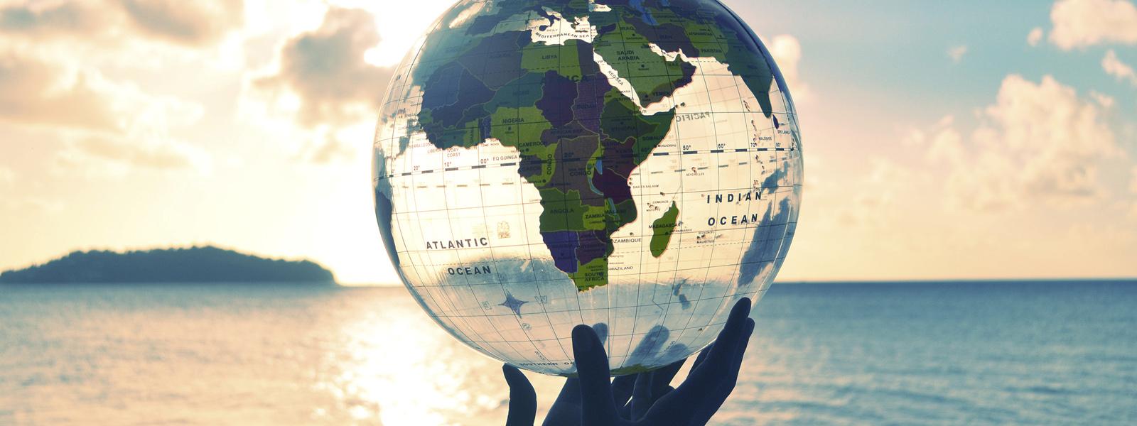 ingredientes-carino-sustentabilidad-global